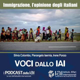 Gli italiani e l'immigrazione